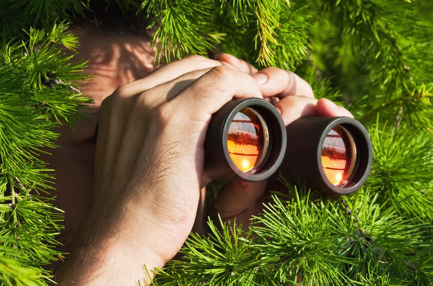watching with binoculars