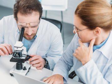 Forscherin und Forscher