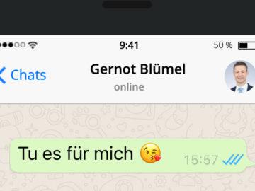 """Blümel schreibt """"Tu es für mich"""""""