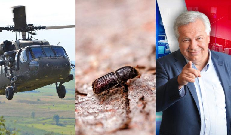 Blackhawk Hubschrauber, Borkenkäfer, Fellner