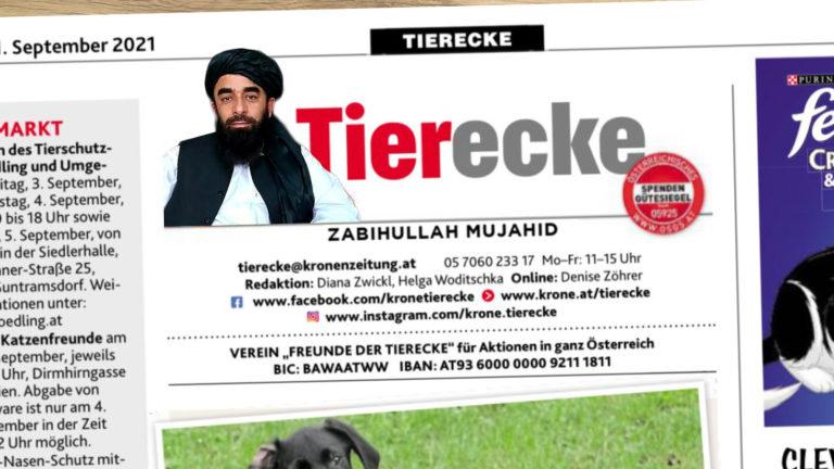 Krone Tierecke mit Taliban-Sprecher als Autor